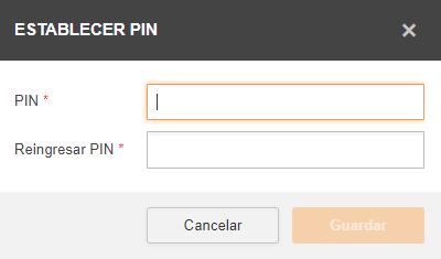 1._authorization_PIN.png
